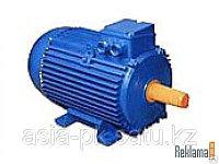 Электродвигатель 55кВт*1500 об/мин. 1081 (лапы)