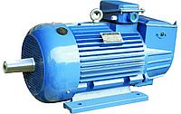 Электродвигатель 132кВт*3000 об/мин. 3081/2081(фланец/комби)