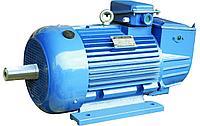 Электродвигатель 55кВт*1000 об/мин. 1081(лапы)