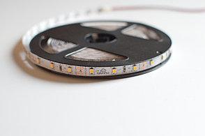 Светодиодная лента 2835 Gstep 01 60 диодов/м (теплый белый) 5 Вт/м