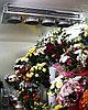 Холодильное оборудование для цветов