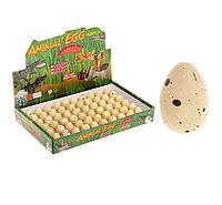 """Растущие животные натуральное яйцо мини """"Динозаврики"""""""