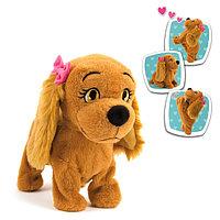 Игрушка Собака Lucy интерактивная (эл/мех Выполняет 12 команд и коммуницирует с Lola) в откр. коробке 30х22х29