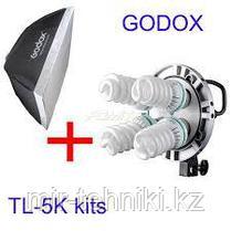 Свет студийный Godox TL-5 kit