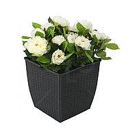 Горшок для цветов HUMLEBI