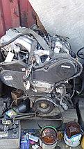 Двигатель 1MZ Toyota Harrier