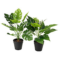 Искусственные растения  THORULF
