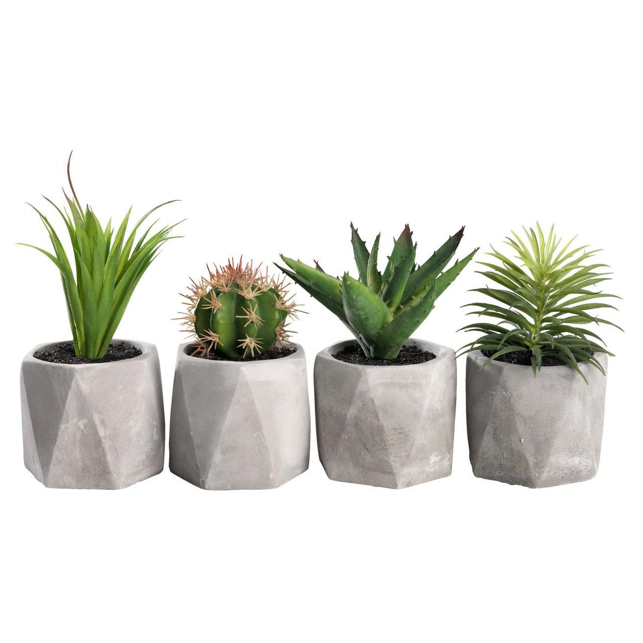 Декор растение TORGEIR