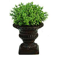 Декор растение