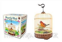 Птичка в клетке ♫♪♫♪