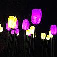 Светодиодные уличные Тюльпаны(20 цветов), желтые, розовые, красные, фото 7