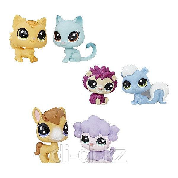 Hasbro Littlest Pet Shop 2 пета (в ассортименте)