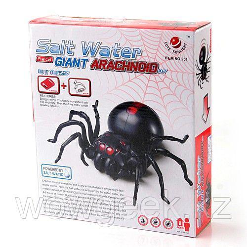 Конструктор-паук на соленой воде