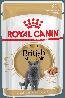 Влажный корм для кошек породы британская короткошерстная Royal Canin British Shorthair Adult в соусе