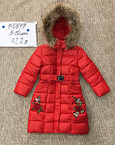 Куртка зимняя Дев.