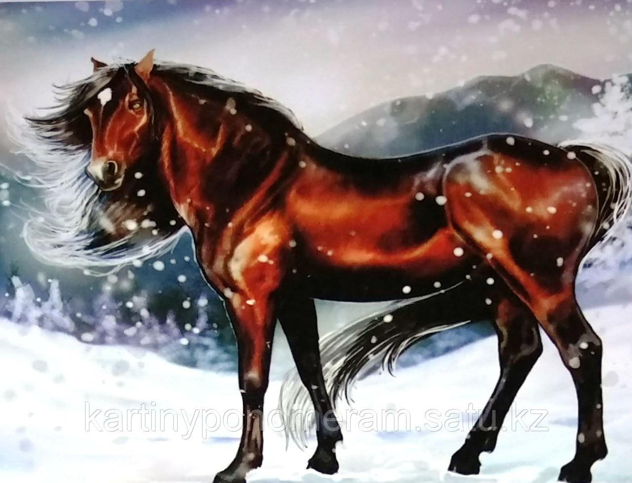"""Картина по номерам """"Статный конь"""""""
