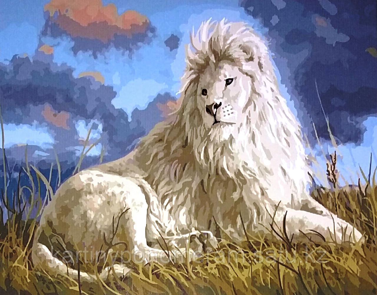 """Картина по номерам """"Белый лев"""""""