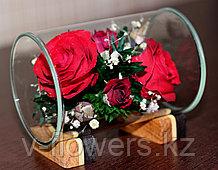 Живые цветы в стекле TmiR