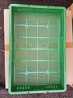 Лотки пластиковые для инкубатора Блиц База
