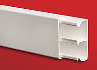 DKC ТА-GN 100x80 Короб с крышкой с направляющими для установки разделителей, фото 1