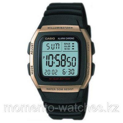 Мужские часы Casio W-96H-9AVDF