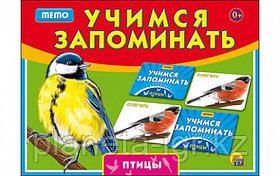 Настольная игра Учимся запоминать Мемо Птицы