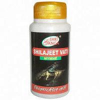 Шиладжит Вати Шри Ганга (Shilajeet Vati Shri Ganga), улучшает проникновение минеральных веществ