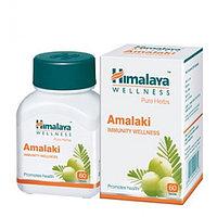 Амалаки  (Amalaki Himalaya),источник витамина С