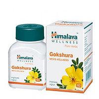 Гокшура (Gokshura Himalaya) - 60 таблеток. Для здоровья почек