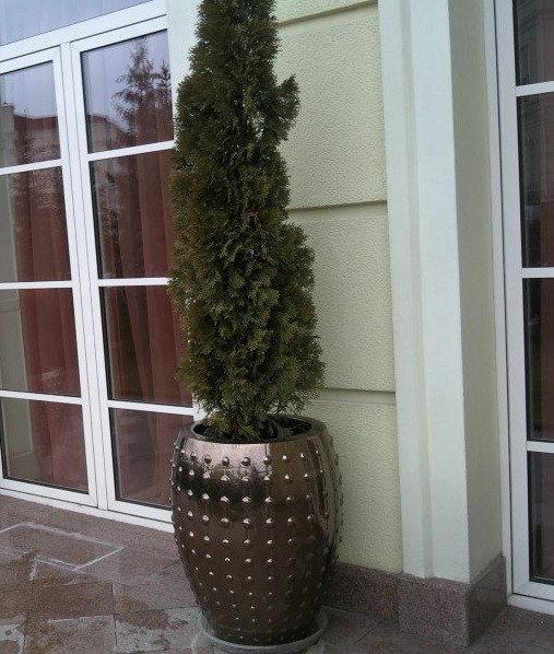 Украсьте вход в дом -1