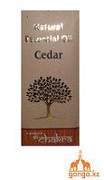 Натуральное Эфирное масло Кедра (Essential Oil Cedar), 10 мл