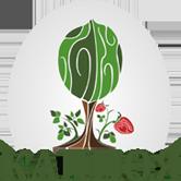 Казахстанская ассоциация производителей и переработчиков орехов и ягод