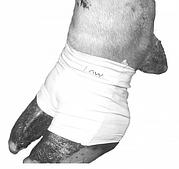 Бандаж ( носок) для лечения копыт у коров Bovivet, голубой, упак. 10 шт, L, 220413, KRUUSE