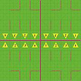 """Учебно-методический комплекс """"Соревновательная алгоритмика мышонка"""" (Набор с 4-мя робот-мышь), фото 2"""