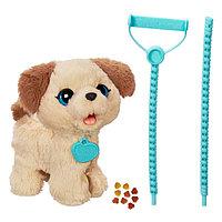 Весёлый щенок Пакс, фото 1