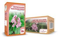 Бадан толстолистный, листья, 50 г
