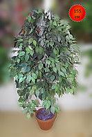 Дерево искусственное, фикус темно-зеленый, 155 см