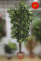 Дерево искусственное, фикус лиана, 250 см