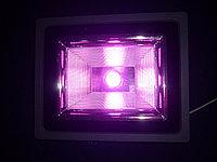 Фитопрожектор полного спектра для теплиц и гроубоксов 50 Вт, фото 1