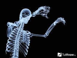 Препараты для укрепления костей