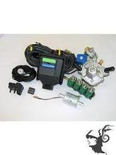 Kомплект контроллеров GREEN GAS 4 цил (ANTARTIC, Hana Green)