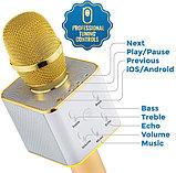 Микрофон Караоке со встроенным динамиком Q7, фото 3