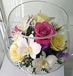 Вечные живые цветы LMM-05, фото 2