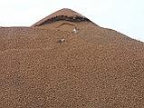 Керамзитовый гравий в мешках, фото 2