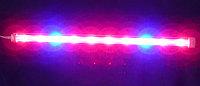 Линейная фитолампа 15W 60 см красный синий 4:1