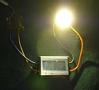 Фито светодиод с белым светом 10W плюс драйвер