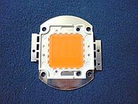 Фито светодиод BridgeLux 30W полного спектра