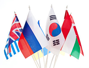 Распечатка флагов