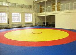 Борцовские ковры для профессионалов