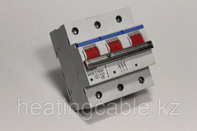 Автоматический выключатель Doepke C100A/3p/6ka, фото 2